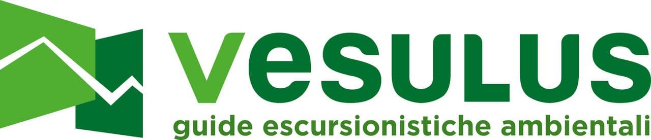 Vesulus logo